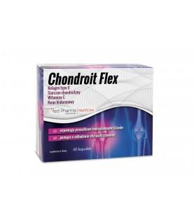 Chondroit Flex 28 g, 60...